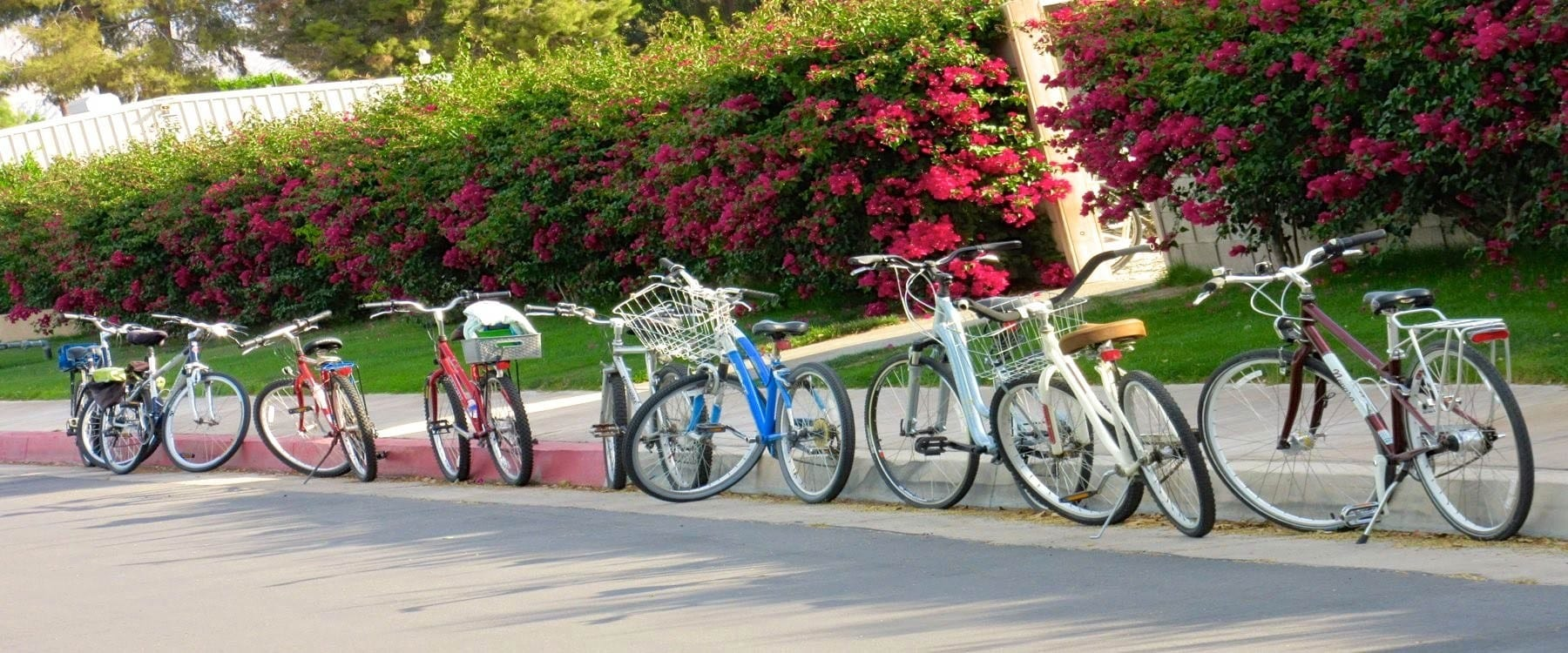 Cycle in the park or join a cycling group.