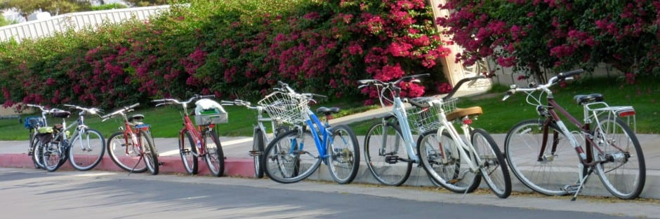 Individual or Group Bike Rentals